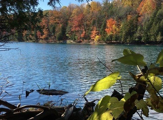 Fall trees along Green Lakes